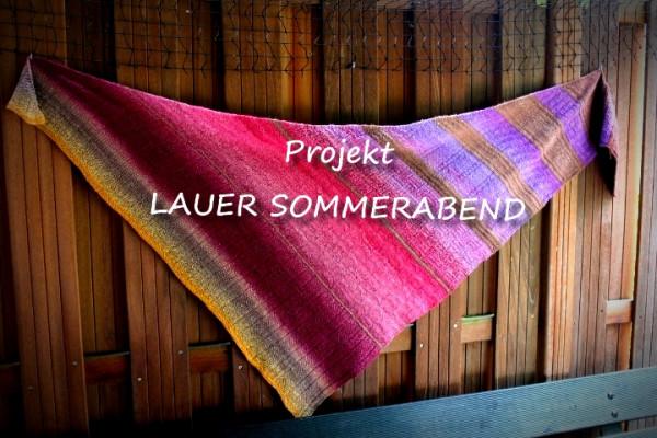 1 Anleitung LAUER SOMMERABEND - Download