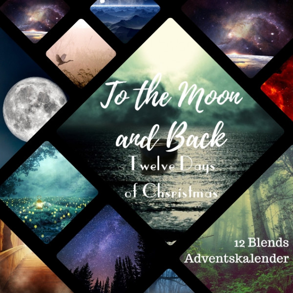 TO THE MOON & BACK Twelve Days of Christmas Kalender